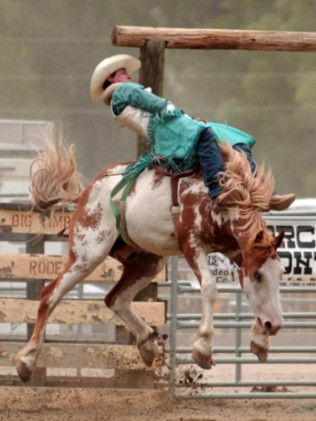 Big Timber Weekly Pro Rodeo